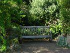 Resting Place - Hyde Park