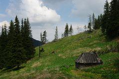 Retezat 2011-1-
