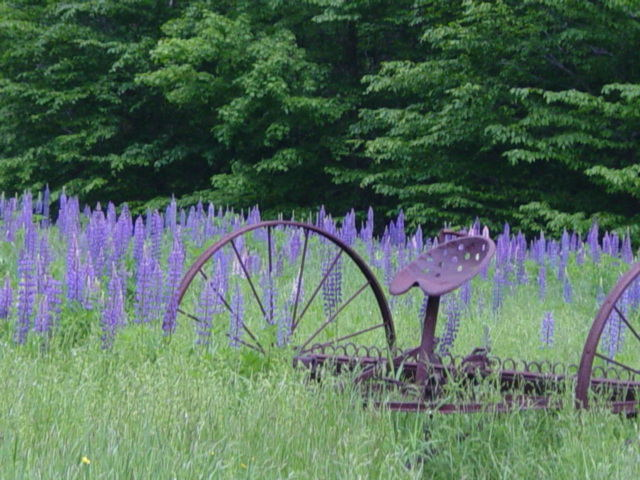 Retired Farming Equipment