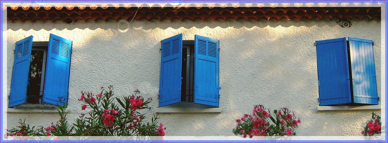 """""""réveil"""" progressif des volets bleus....:)"""