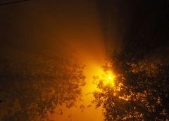 Réverbère  de nuit dans la brume automnale