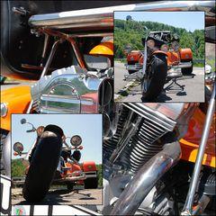 rewaco Trike FX 6
