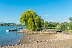 Rhein bei Heidenfahrt