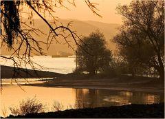 Rhein bei Ingelheim