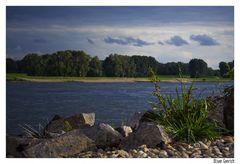Rhein Impression