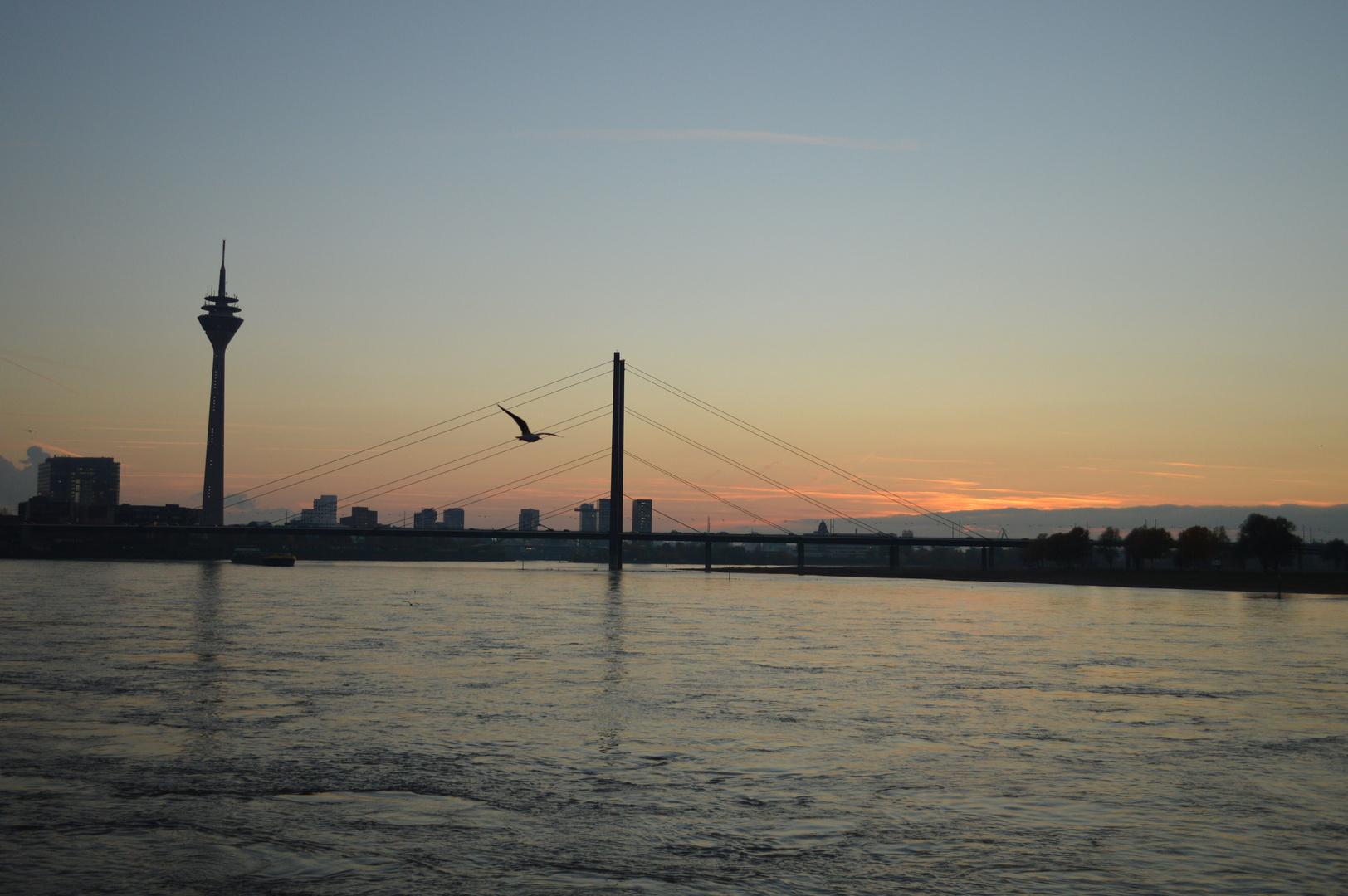 Rhein Kniebrücke Düsseldorf