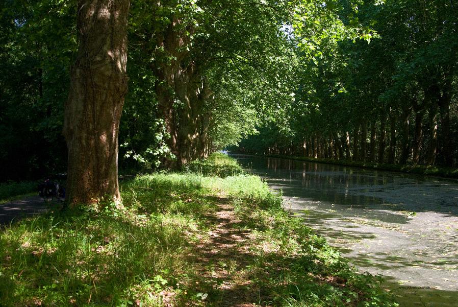 Rhein-Rohne-Kanal II