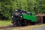Rhein-Sieg-Eisenbahn: Grüne Schönheit