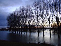 Rheinaue Bislich