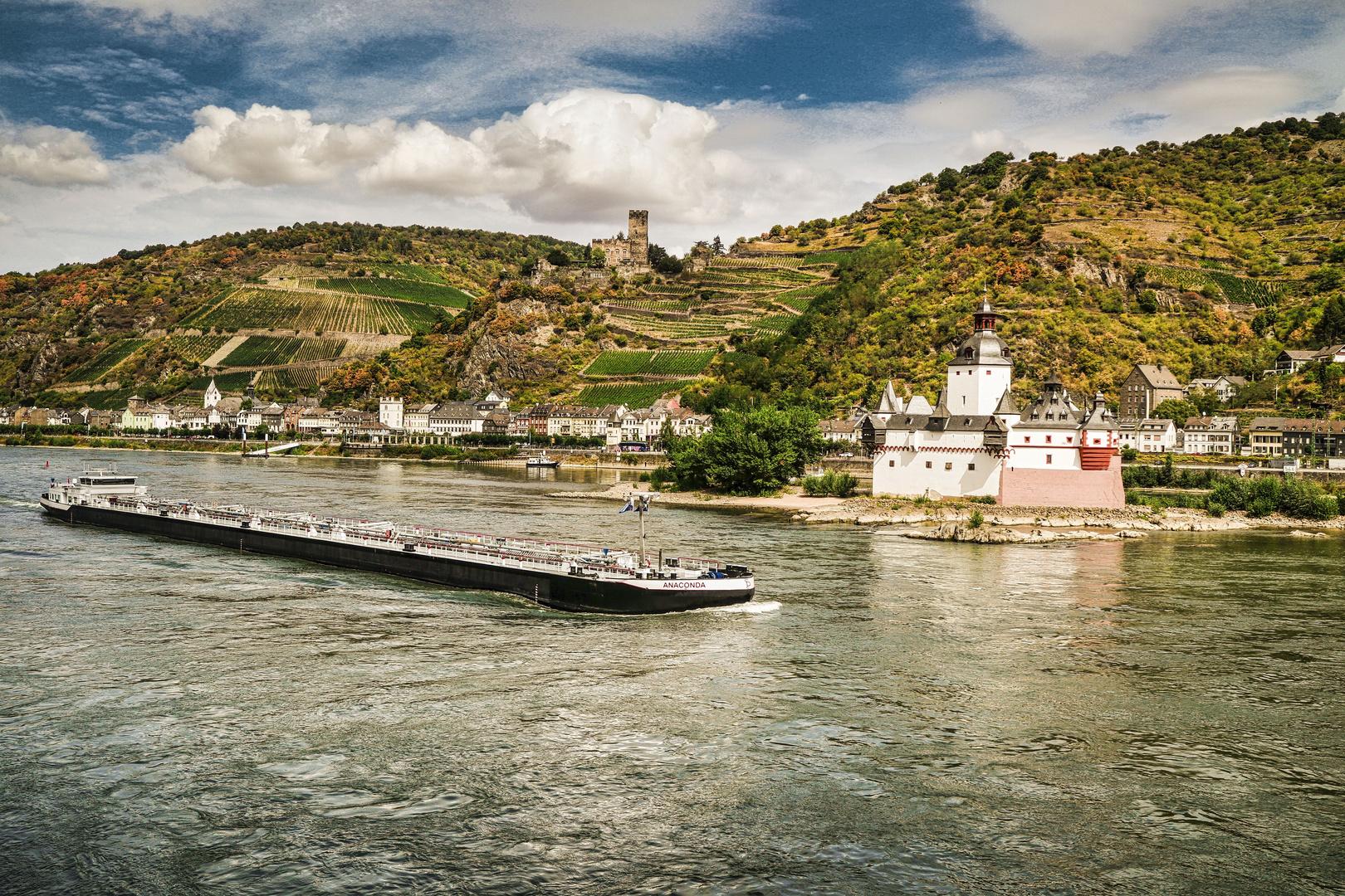 Rheinblicke