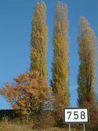 Rheinkilometer 758