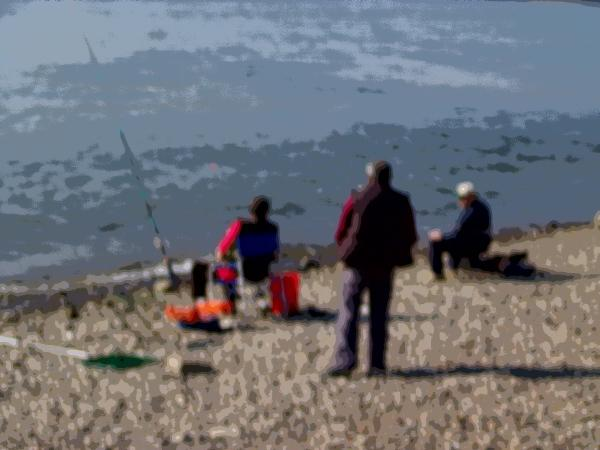 Rheinlandschaft bei Mondorf - Angler