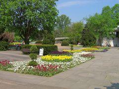 Rheinpark 6