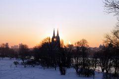 Rheinpark im Winter