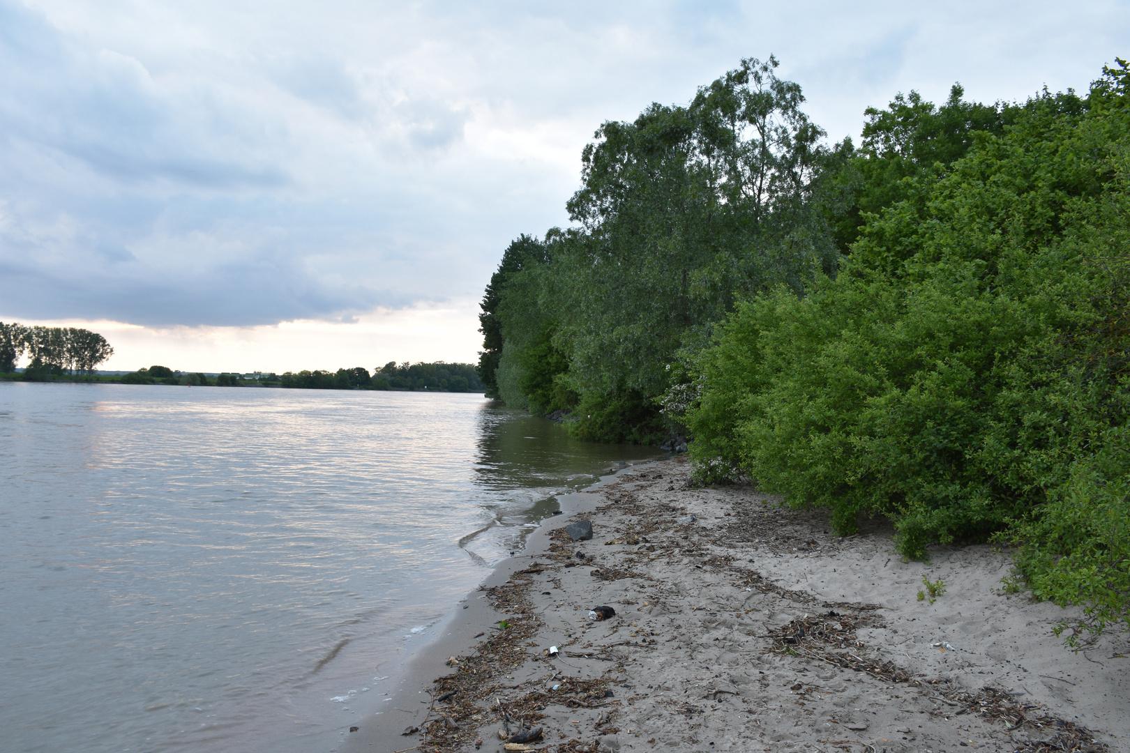 Rhein Strand