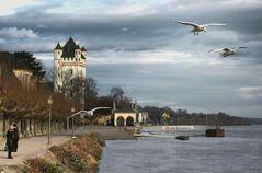 Rheinufer - Eltville