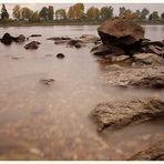 Rhine2'