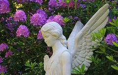Rhodo und Engel