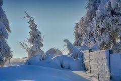 RHÖN -Winter