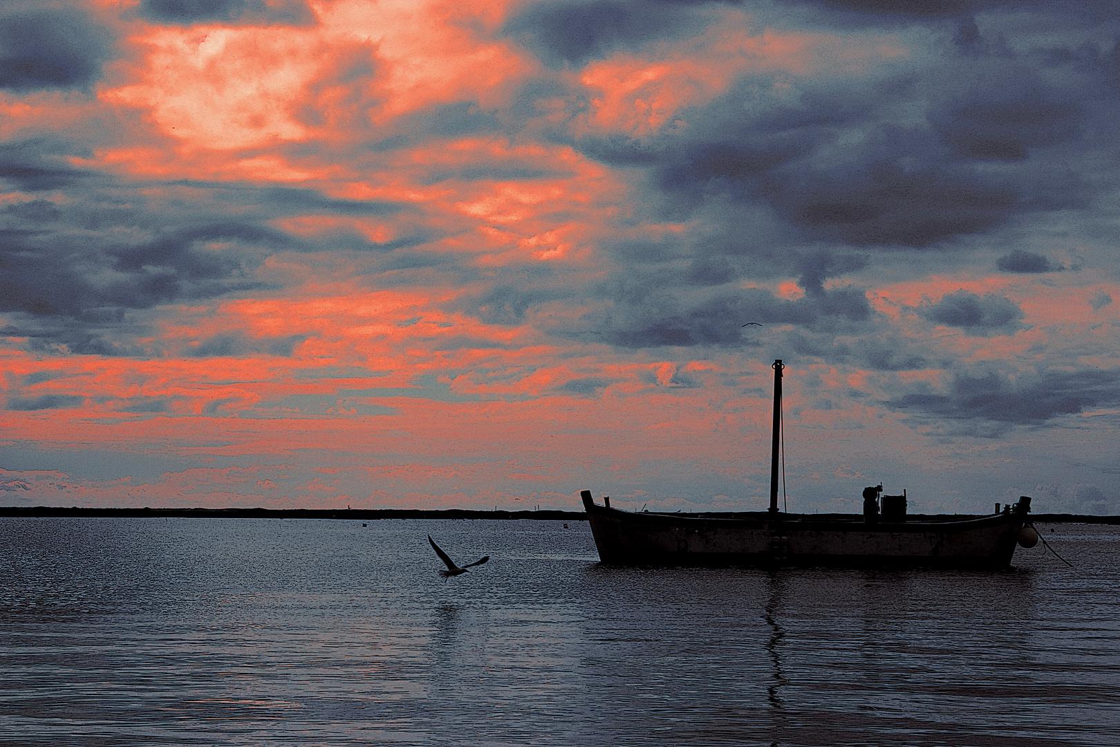 Ria Formosa - Algarve