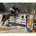 Richtig gutes Championesse 2012