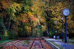 Richtung Herbst