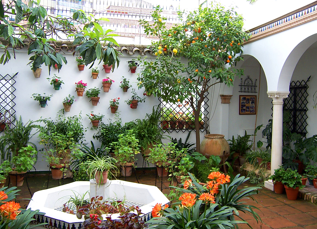 Ricordi di viaggio : Andalusia