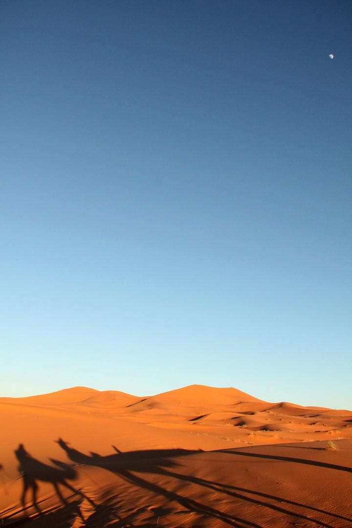 Riding into the desert..