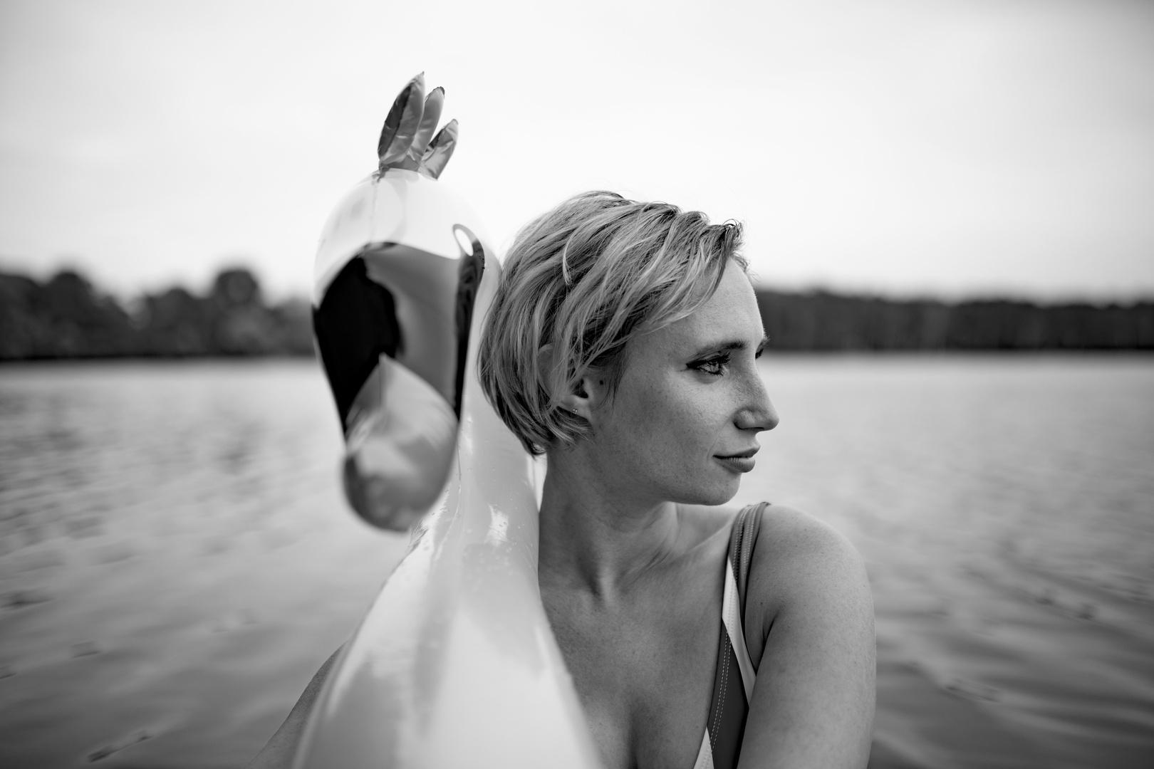 riding the swan II