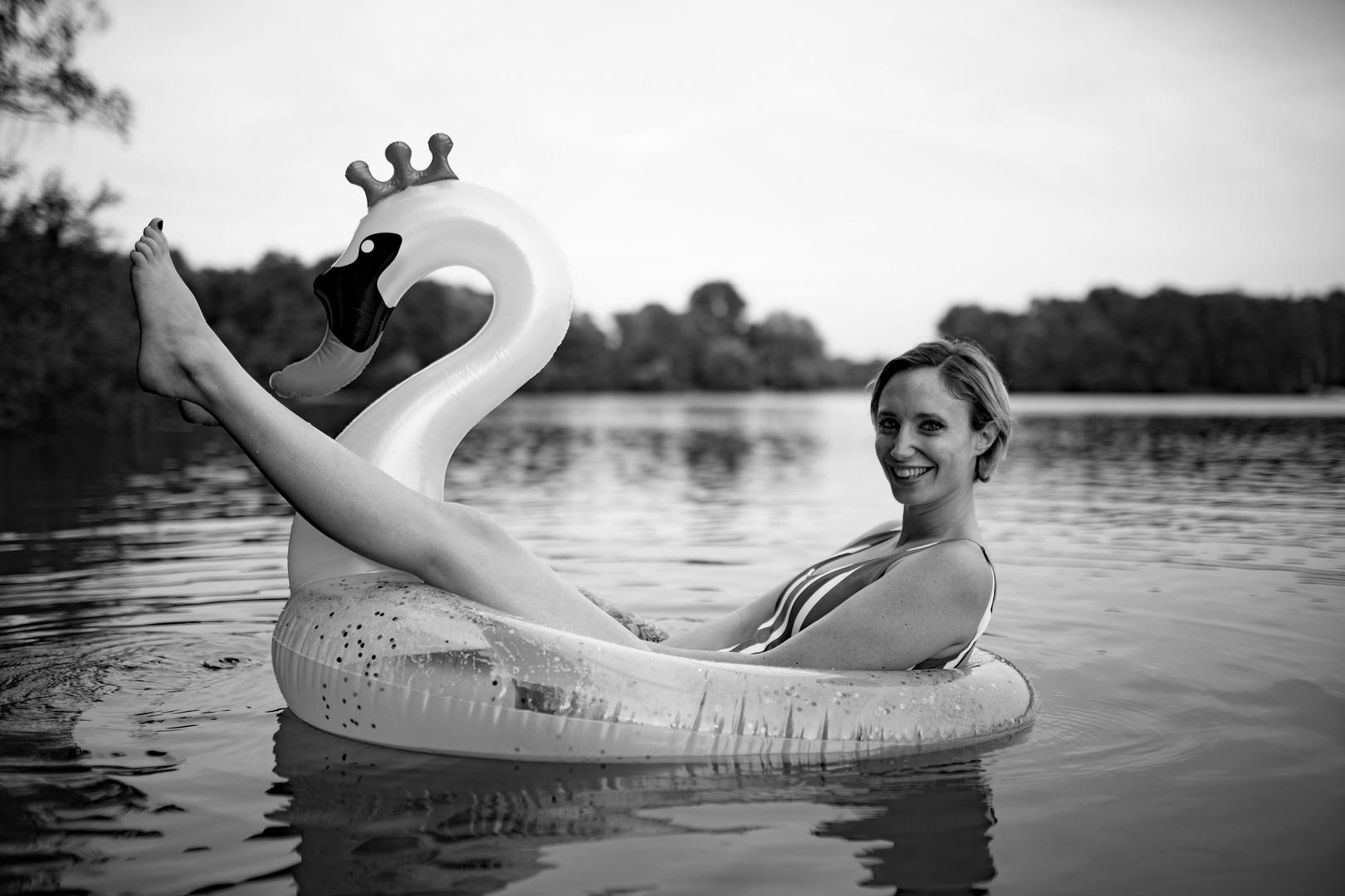 riding the swan III
