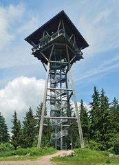 Riesenbühl - Turm