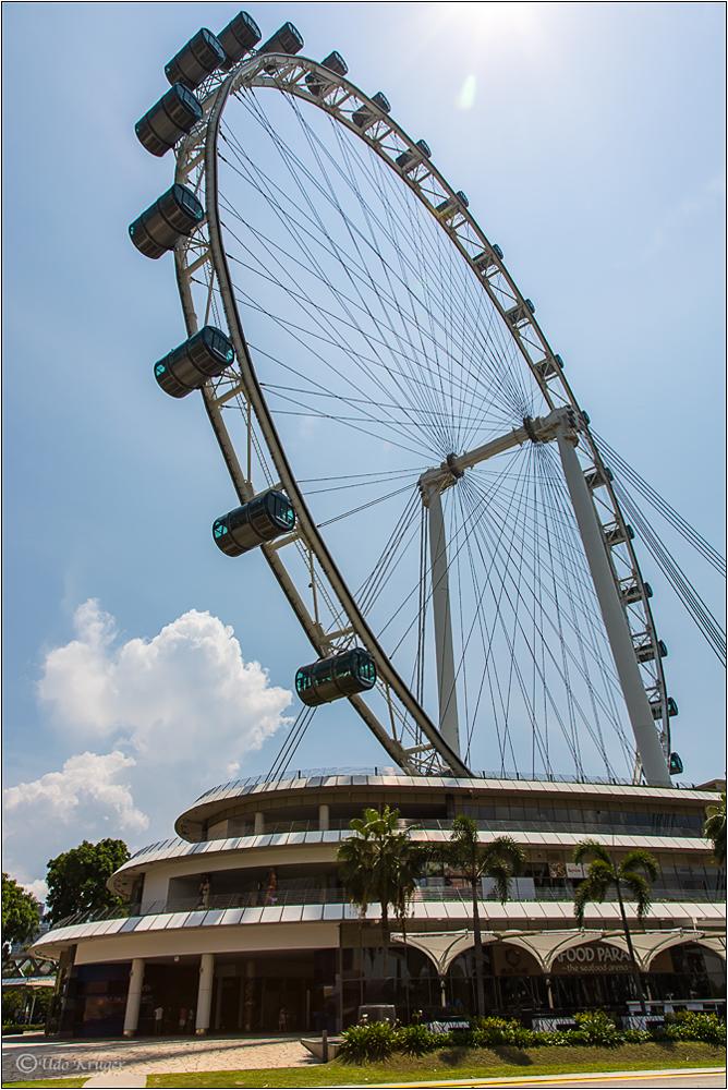 """Riesenrad """"Flyer"""" von Singapore"""