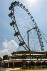 "Riesenrad ""Flyer"" von Singapore"