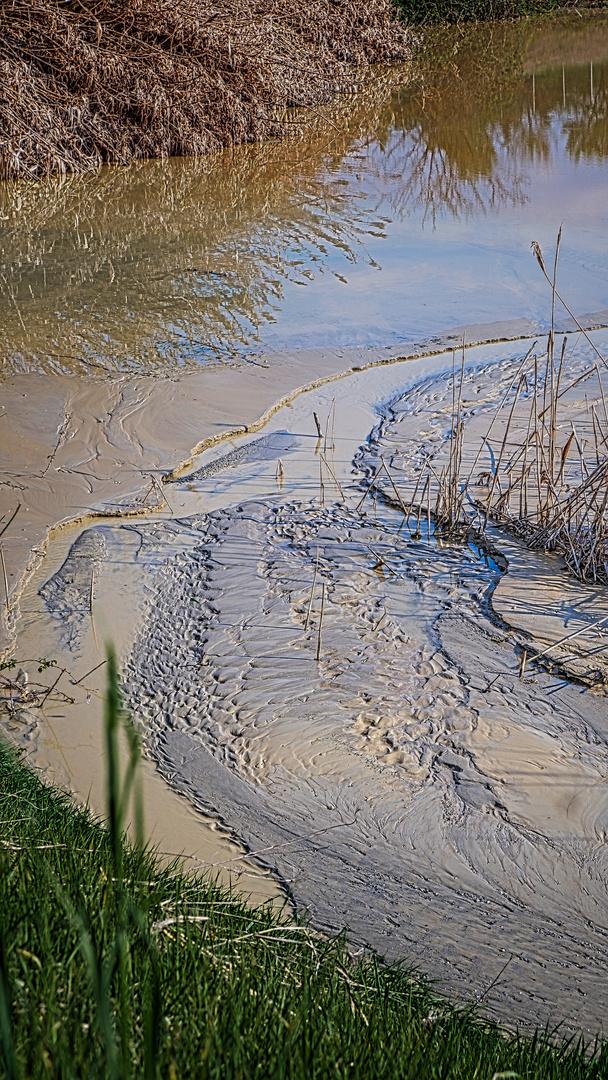 riflessi nel fango