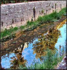 Riflessioni sul fiume Alcabrichel .