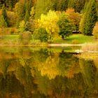 Riflesso d'autunno