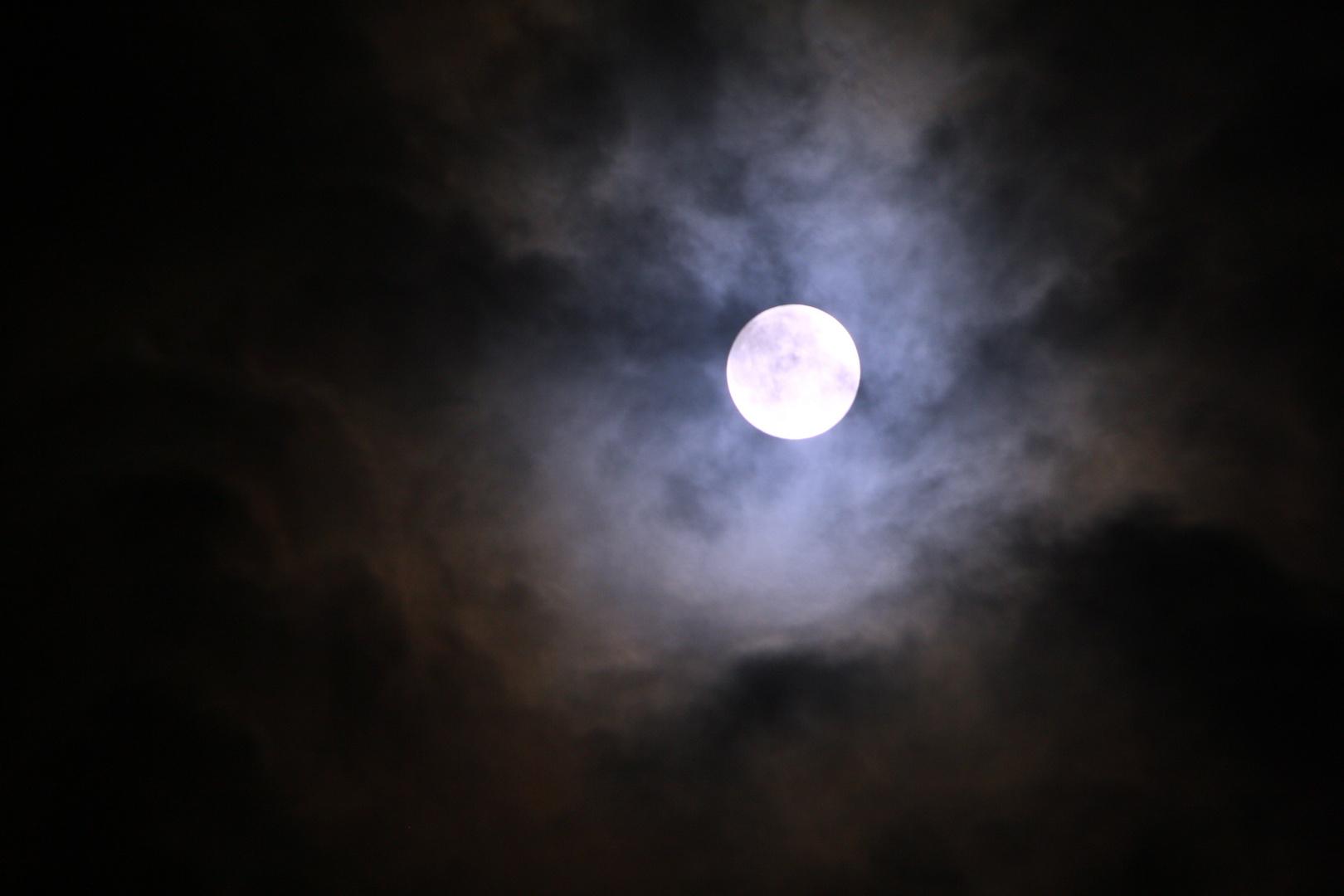 Rilke-Nacht