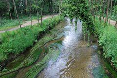 rio de louro