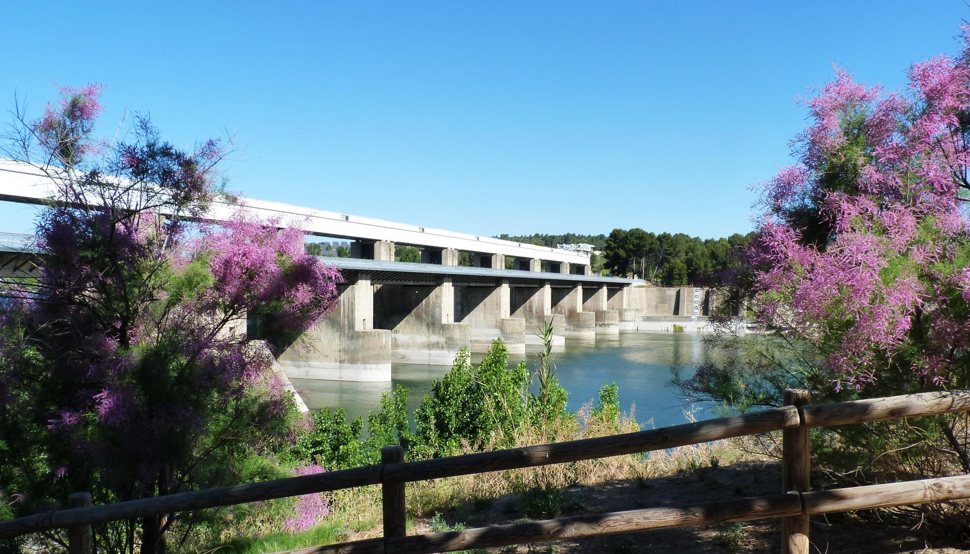 Rio Ebro...017