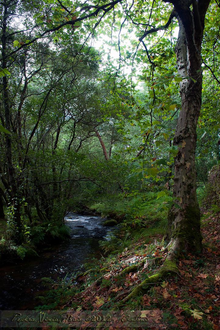 Río Grande en Pedra Vixía, Baio, A Coruña