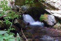 Rio Sacro, Bolognola (Mc)