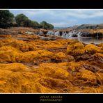 Río Tinto (Calcopirita)