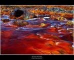 Río Tinto Detalles Web