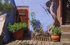 Riquewihr - Hinterhof Impression