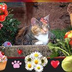 Rita hat Geburtstag