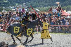 Ritter Turnier in Südtirol 2014