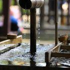 Rituelle Reinigung am Meiji Schrein