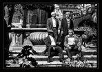 Riunione di famiglia - Family Reunion