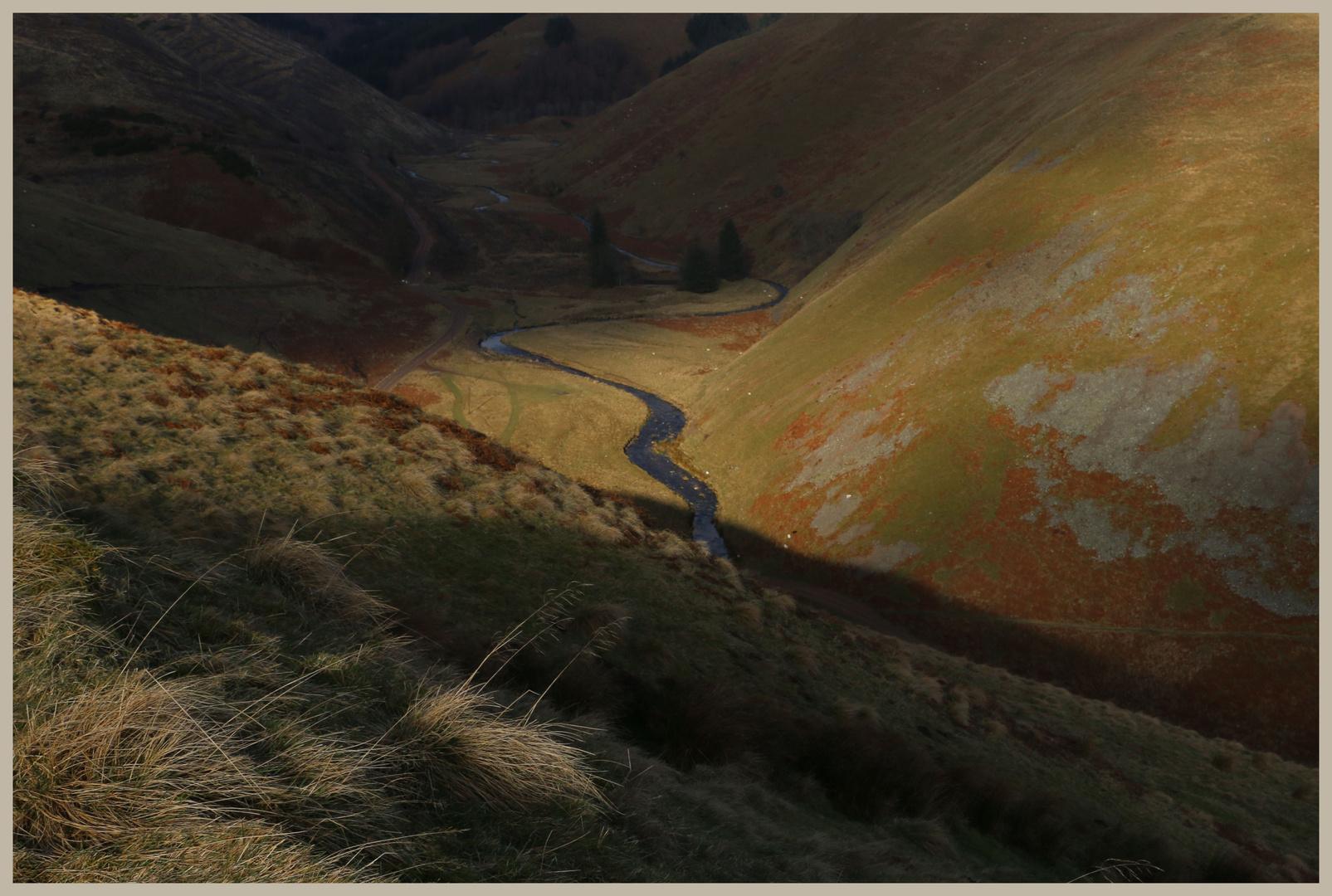 River Alwin in winter