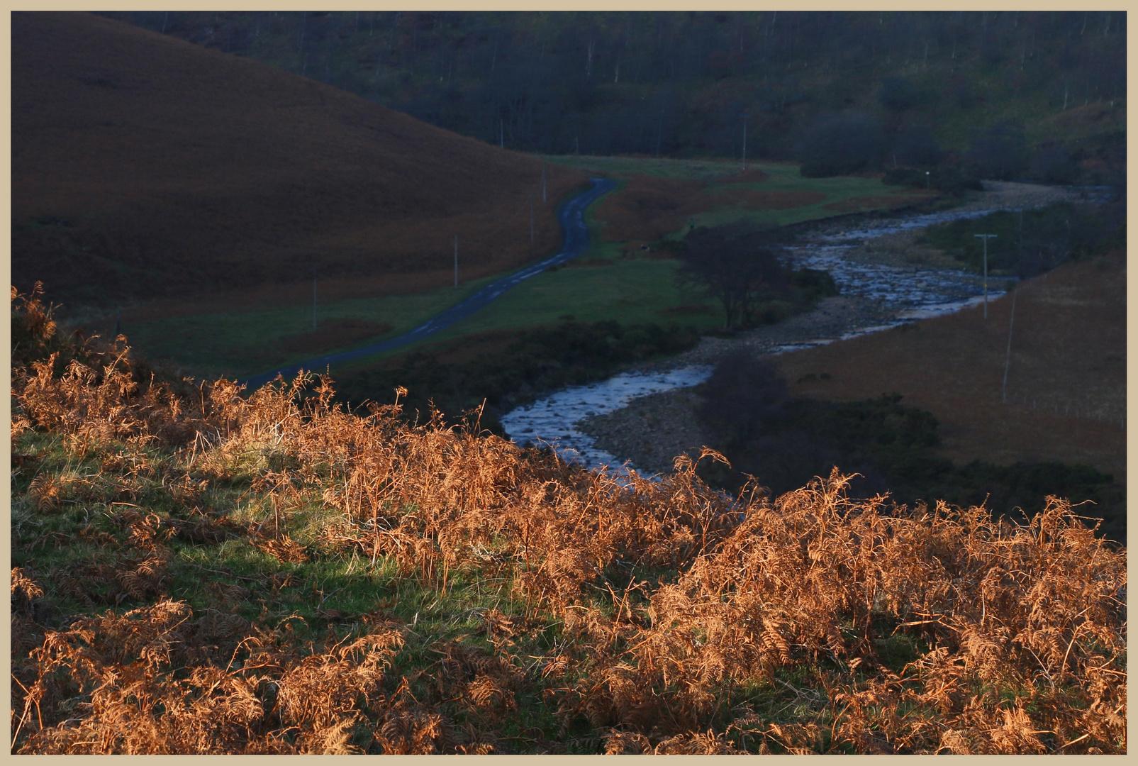 River breamish near Ingram